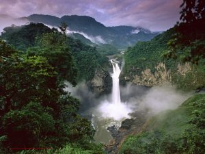 Amazon-Rainforests-Amazonia-South-America